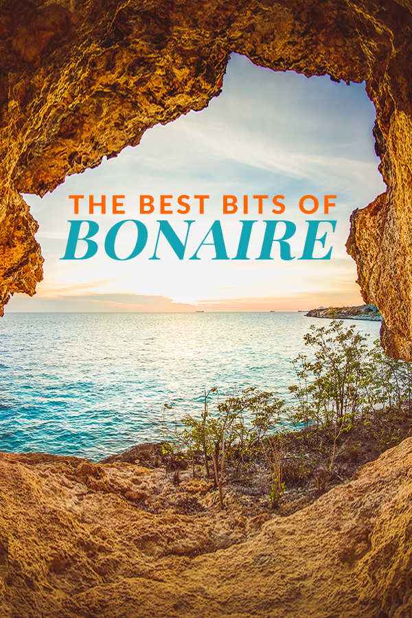 The Best Bits of Bonaire on a cruise or and land air and vacations